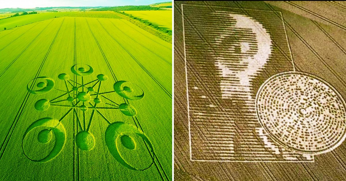 30 Images Of Crop Circles We'd Never Set Foot In | TheTravel