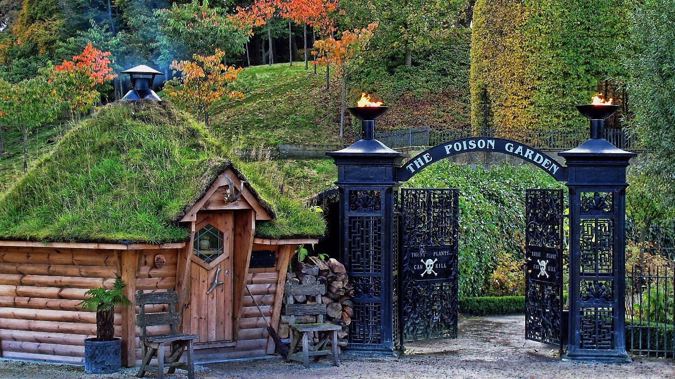 The Alnwick Poison Garden 10 Things Visitors Will Only Discover There