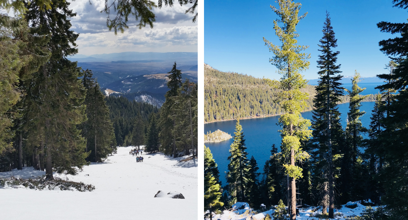 Where To Stay In Lake Tahoe, Depending On What Kind Of Vacation You're Looking For