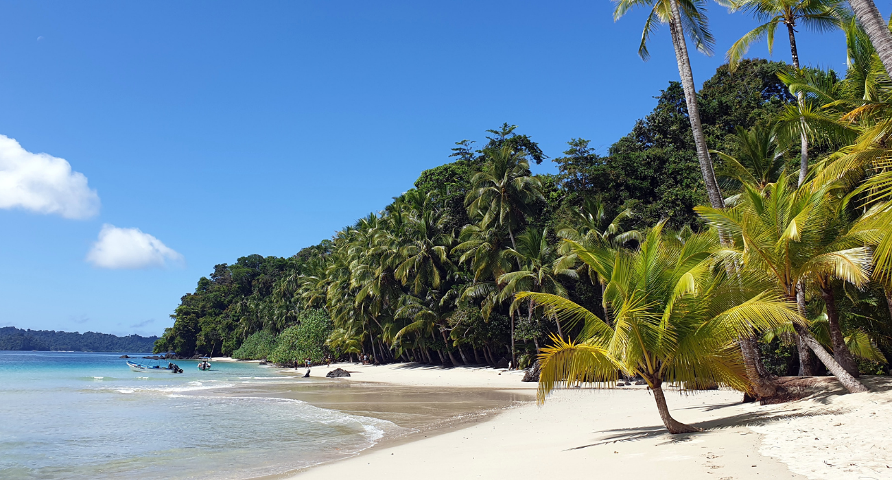 How To Travel Safely To The Forgotten Tropical Solomon Islands