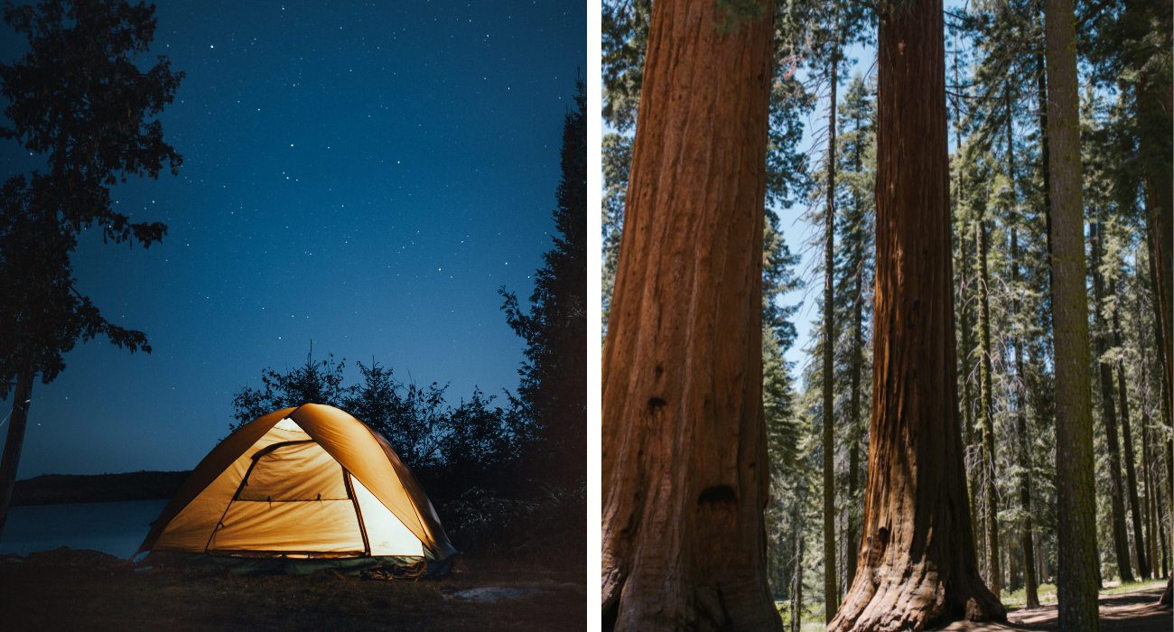 What To Know About Pfeiffer Big Sur State Park, From Hiking Trails To Campsites