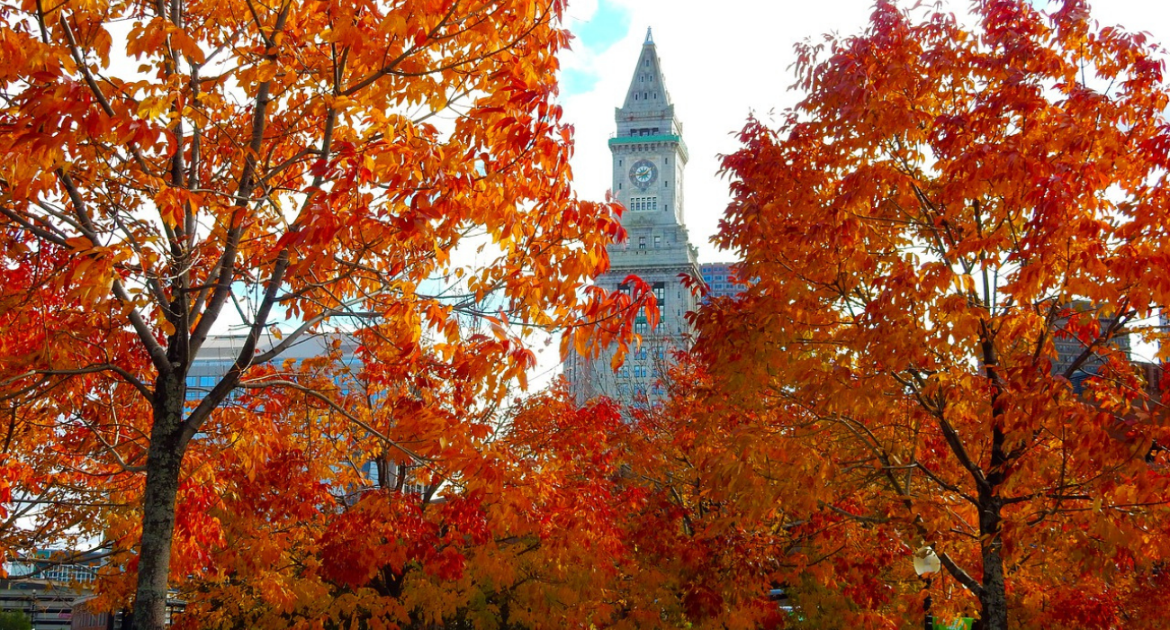 Here's Why You Should Visit Boston In The Fall Over Any Other Season