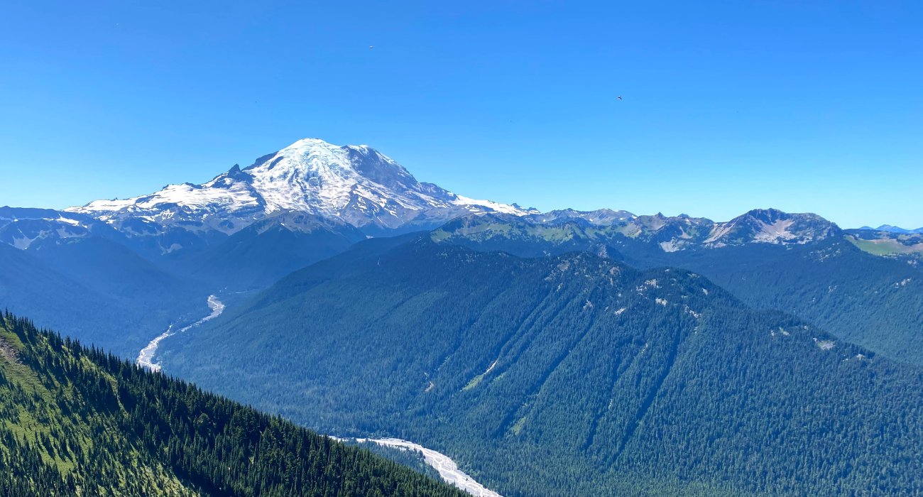 Why Everyone Should Rainy Mount Rainier National Park At Least Once In Their Lives