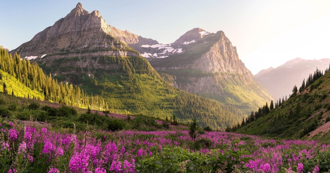 Should You Plan a Hiking Tour of Glacier National Park During the Summer? Here Are the Perks